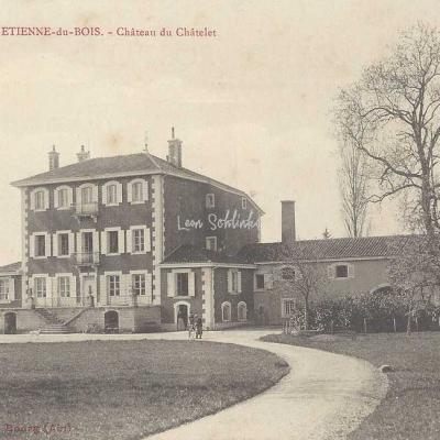 01-Saint-Etienne-du-Bois - Château du Châtelet (B.Ferrand)