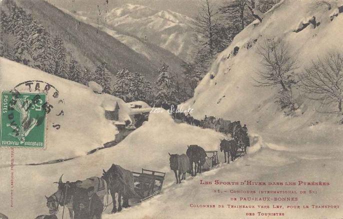 11 - Colonne de traineaux vers Ley, pour le transport des touristes