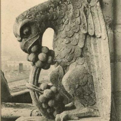 1188 - Notre-Dame - Chimère