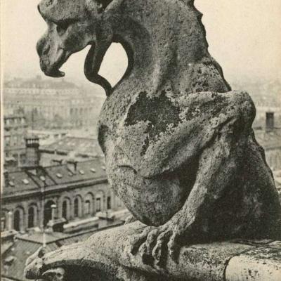 1198 - Notre-Dame, Chimères