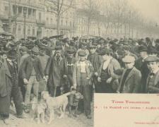 12 - Le Marché aux Chiens - Allée Lafayette