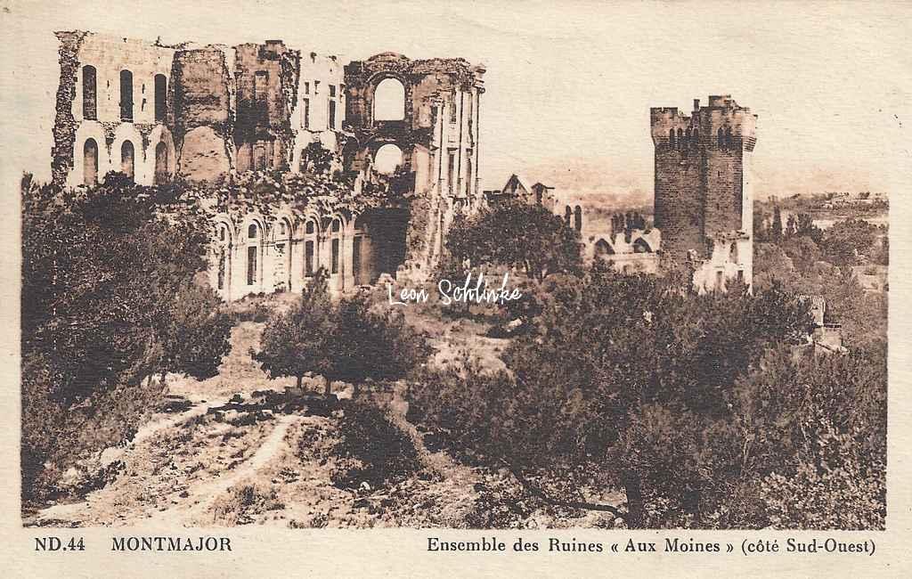 13-Arles - Montmajor, ''Aux Moines'', les ruines (ND 44)