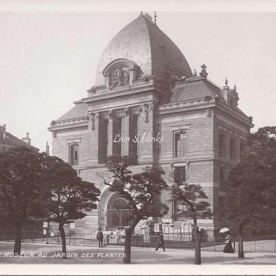 146 - Le Muséum au Jardin des Plantes
