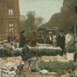 L.V. & Cie - Marché aux Fleurs