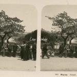 193 - Paris - Palais Royal, le Jardin