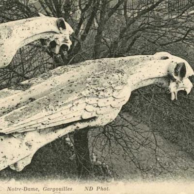2036 - Notre-Dame, Gargouilles