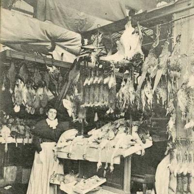 21 - Les grands marchés - Pavillon du gibier