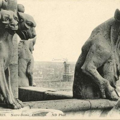241 - Notre-Dame, Chimères