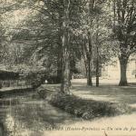 26 - Un coin du Jardin Massey