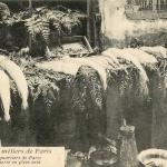 27 - Anciens quartiers de Paris - Poissonnerie en plein vent