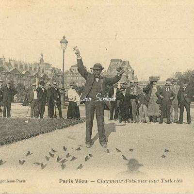29 - Charmeur d'Oiseaux aux Tuileries