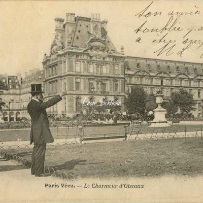 31 - Le Charmeur d'Oiseaux