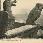 ND - Chimères & Gargouilles