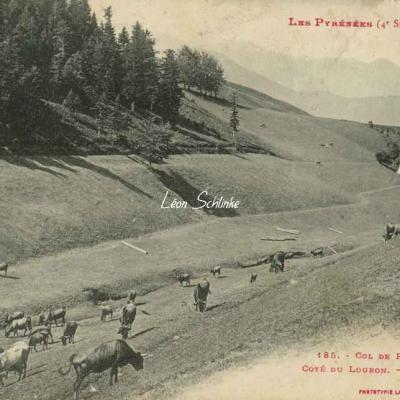 4 - 185 - Col de Peyresourde - Les Pâturages