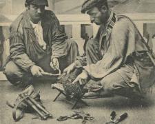 44 - Gitanos tondeurs de chiens au travail
