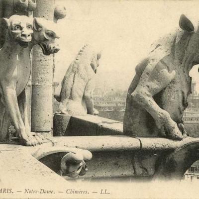 441 - Notre-Dame - Chimères