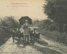 45 - Chevrier et son Troupeau