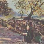 51 (S3) - Bouquiniste du Quai Voltaire