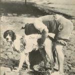 53 - Laveur de chiens