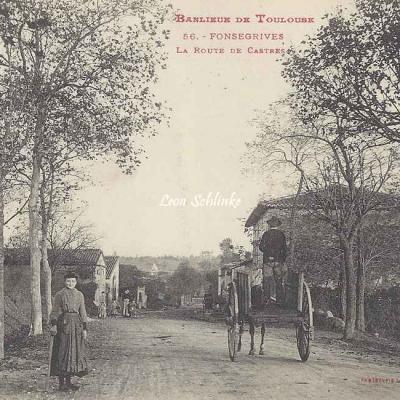 56 - Fonsegrives - La Route de Castres