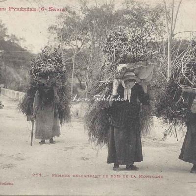 6 - 281 - Femmes descendant le Bois de la Montagne