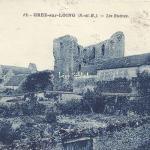 77-Grez-sur-Loing - Les Ruines (Phot-edit 12)