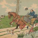 1229 - Accidents d'attelages