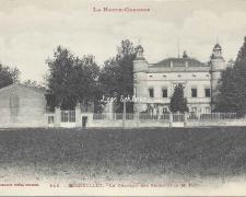 Fenouillet - Le Château des Seignous (Labouche 646)