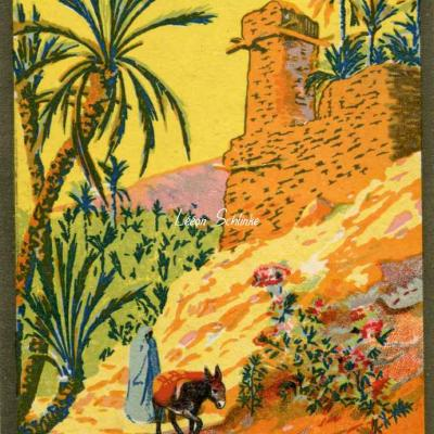 Le Sud Algérien - LE FIGUIG