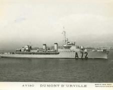 Aviso DUMONT D'URVILLE