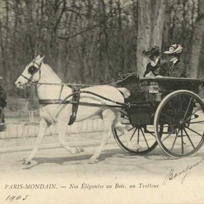 ND 31 - Nos élégantes au Bois - Un Trotteur