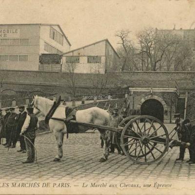 ND 847 - Le Marché aux Chevaux, une Epreuve