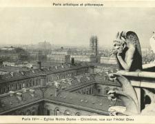 PARIS IV° - Eglise Notre Dame - Chimères, vue sur l'Hôtel Dieu