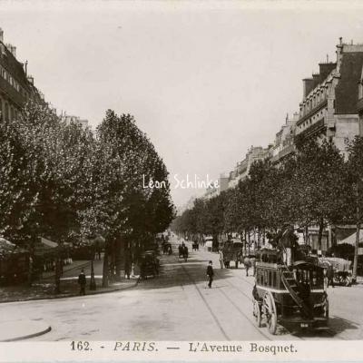 Rose 162 - L'Avenue Bosquet